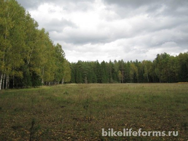 Осень в Завидовском заповеднике