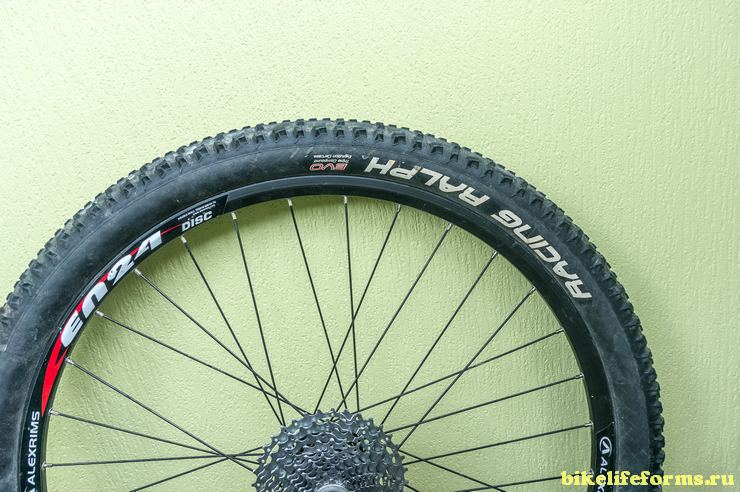 Schwalbe racing ralf review