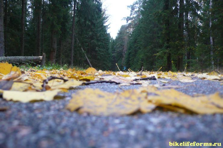 Выше осени или на велосипеде по Волоколамскому району