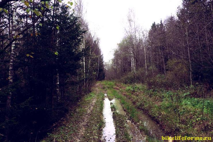 Дорога — от села до села, а по всей земле калужской повела