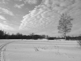 Эстетика одного холодного зимнего дня