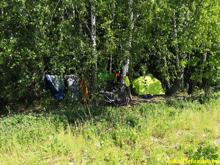 Расчистили место для палатки на опушке леса в тульской области.