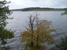 Рыбные места для велосипедиста на Вазузском водохранилище