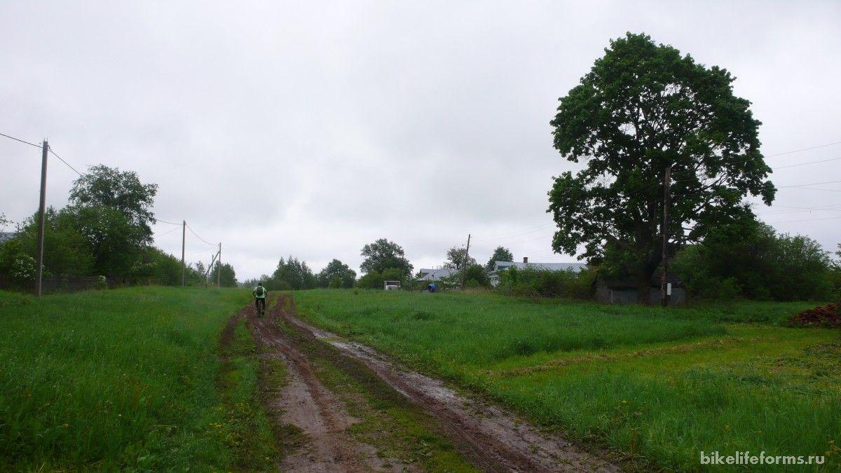 дорога на Буйгород