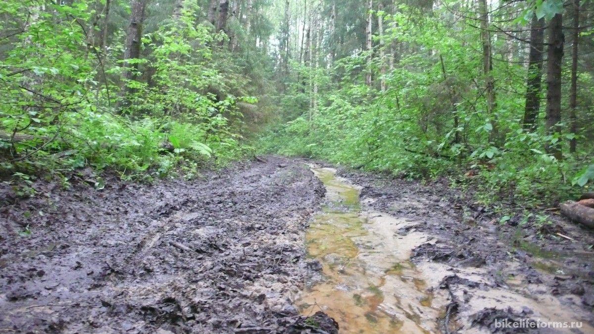 текут ручьи после дождя