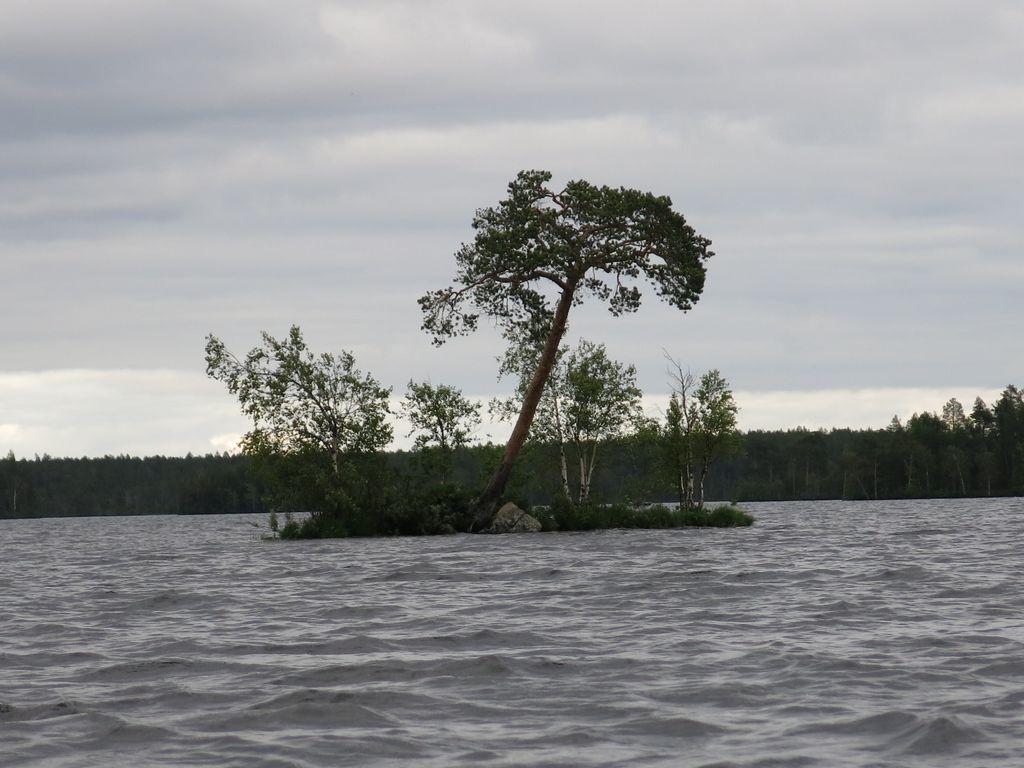 Остров в Карелии