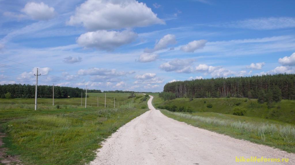 Далее начинается дорога вдоль бескрайних сосновых боров...