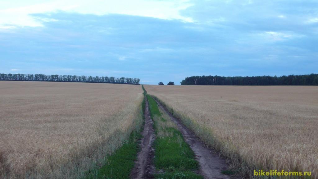 Жизни нет и смерти нет, только одинокая дорога в бескрайних русских полях. Чьи они эти поля?