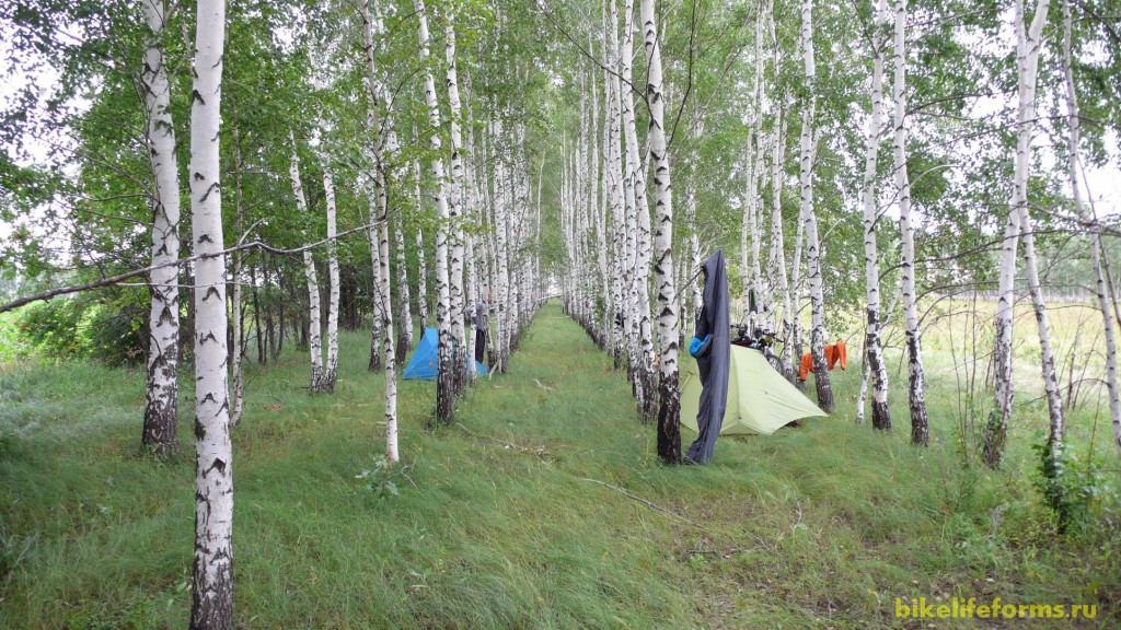 Грунтовка привела нас в Березовую рощу, где мы установили наш лагерь, развели костер и долго беседовали под шум ветра и тепло костра. А утро нас порадовало по-настоящему теплой погодой...