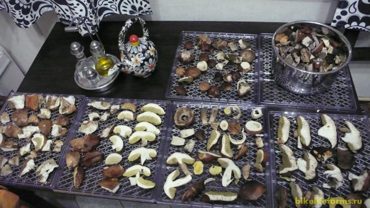 Готовка грибов к сушке