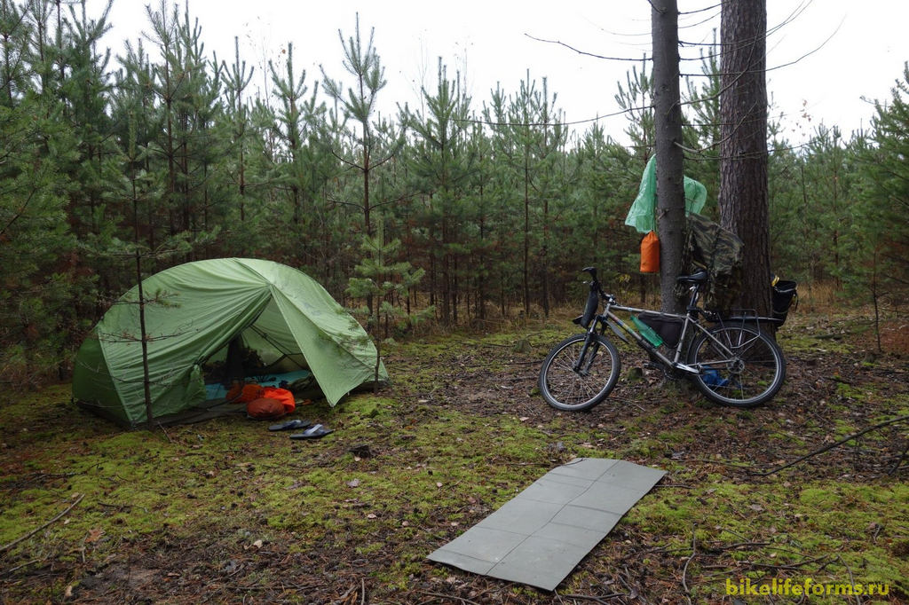 Место нашей ночевки было смачное. Мы с Димой токсикоманы. Утром нас порадовал  ядреный, плотный запах прелой листвы и хвои.
