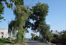 Дон.басс-2014: из Грязей на юга. Начало
