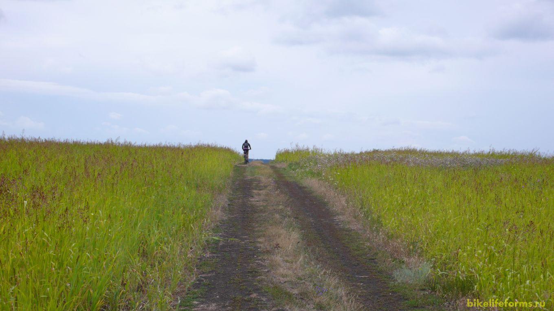 После яблоневых посадок, сливовых садов и кукурузных полей и дубрав с кабанами, мы берем последнюю отметку высоты перед деревней Костомарово. Анечка на легком велосипеде Specialized очень быстро отрывается от меня.