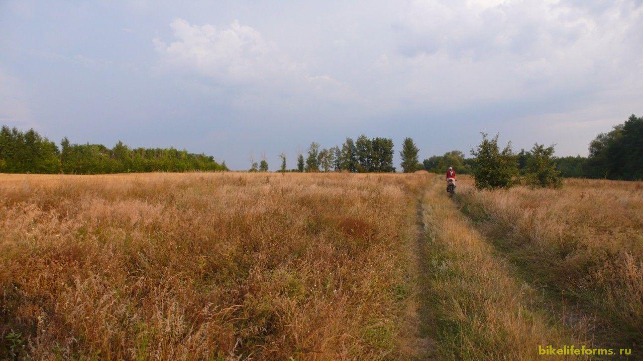 Дорога идет мимо небольших болотец, сосновых боров. Встречаются и бесконечные пасеки.