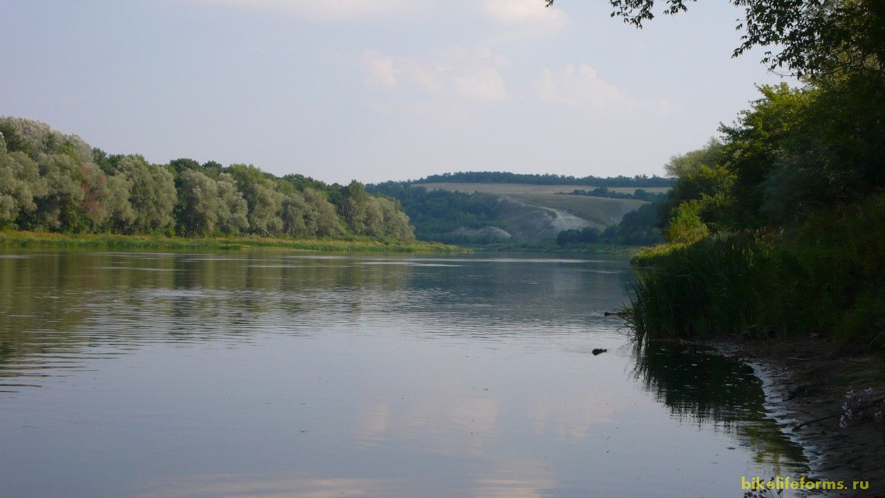 А вот  и удобное место для купания на реке Дон, но вода в нем отвратительно теплая  и похожа на слизь.