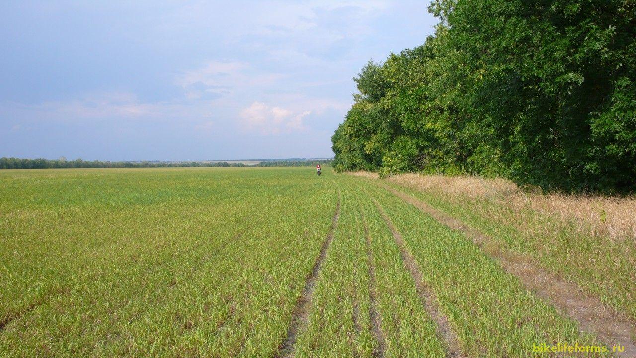 Через 9 км дорожка закончилась, уступив место бесконечным полям, лугам и холмам.  Фигли делать. Поехали прямо по полю.