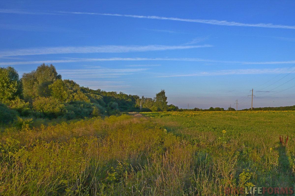Вокруг Старой Тойды безмолвные луга и поля раскинулись на десятки безлюдных километров