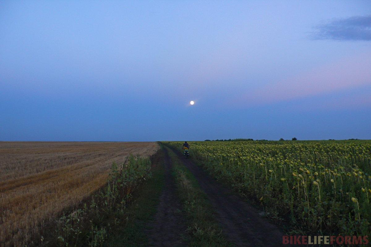 Мы проехали Липовку и выехали на дорогу вдоль поля подсолнечника. Денис укатил вперед, взошла луна. Сумерки, тишина и полное безразличие природы к человеку. Денис почти скрылся за горизонтом, а я все стоял и смотрел вокруг. На спидометре было 110км.