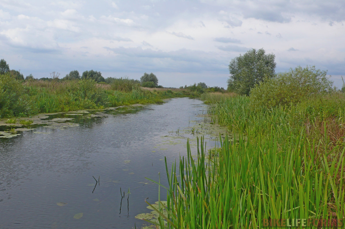 Речка Икорец. Последнее купание в нашем походе.