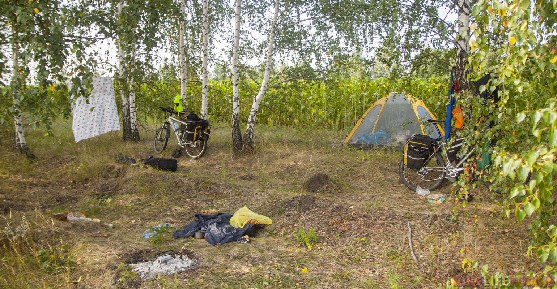 Приютились между полей подсолнухов в 2 км от Красивой Мечи.