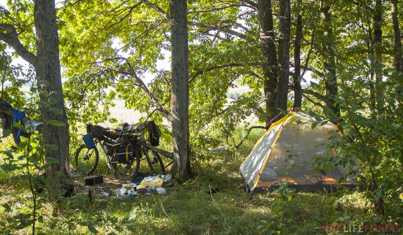 Втащили от Шилово более 30 км и встали снова недалеко от Птани в дубовой роще.