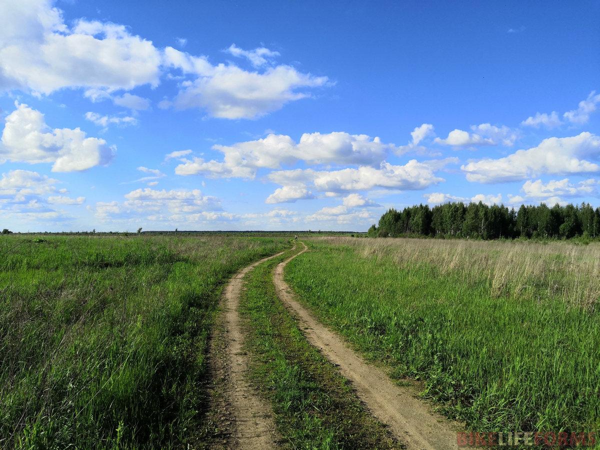 Дороги петляют в полях и перелесках.
