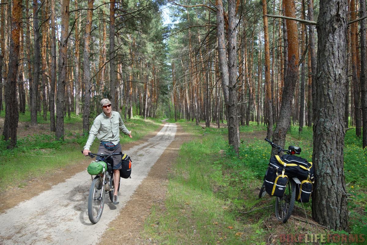 настоящий рукотворный лес!