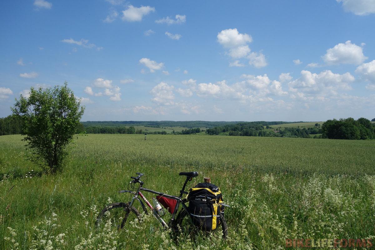 к северу от Болхова уже, по сути, зона лиственных лесов