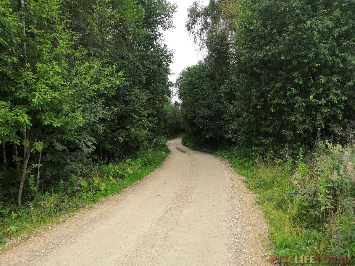 С утра нас снова привечали лесные дороги, ведущие от одного села к другому.