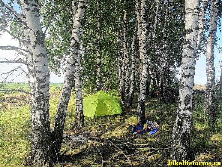 Любимое место над рекой Осетр, Московская область.