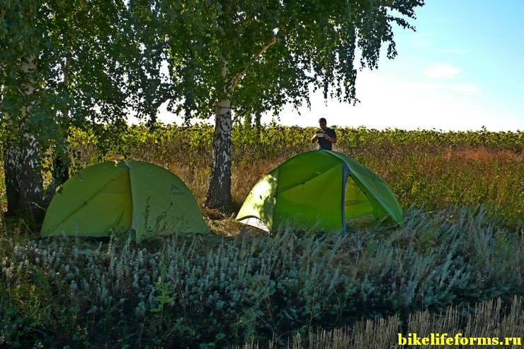 """Съехали в сторону от """"главной дороги"""" в полях и поставили палатки на краю поля. Август, Воронежская область."""