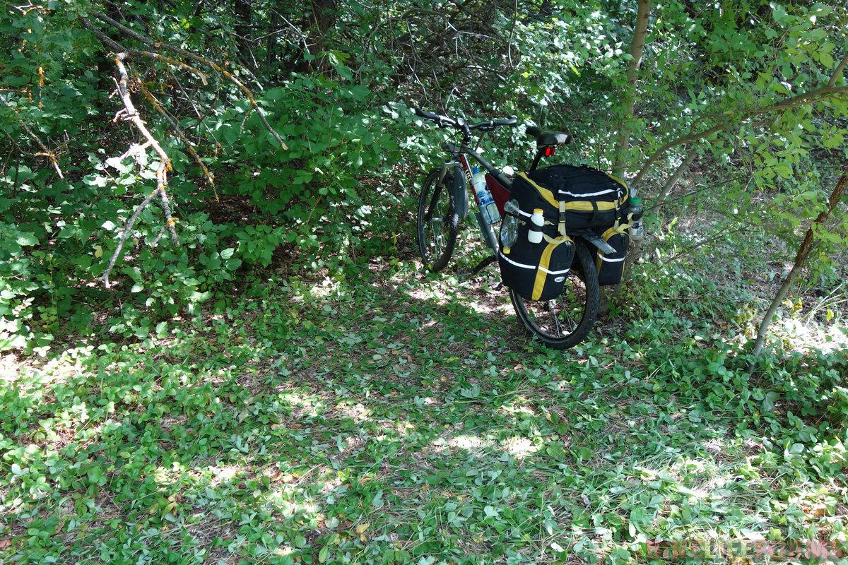 место над рекой выбирал уже ночью. Вместо сосен получил лиственные посадки. А утром полезли клещи, не считая комаров