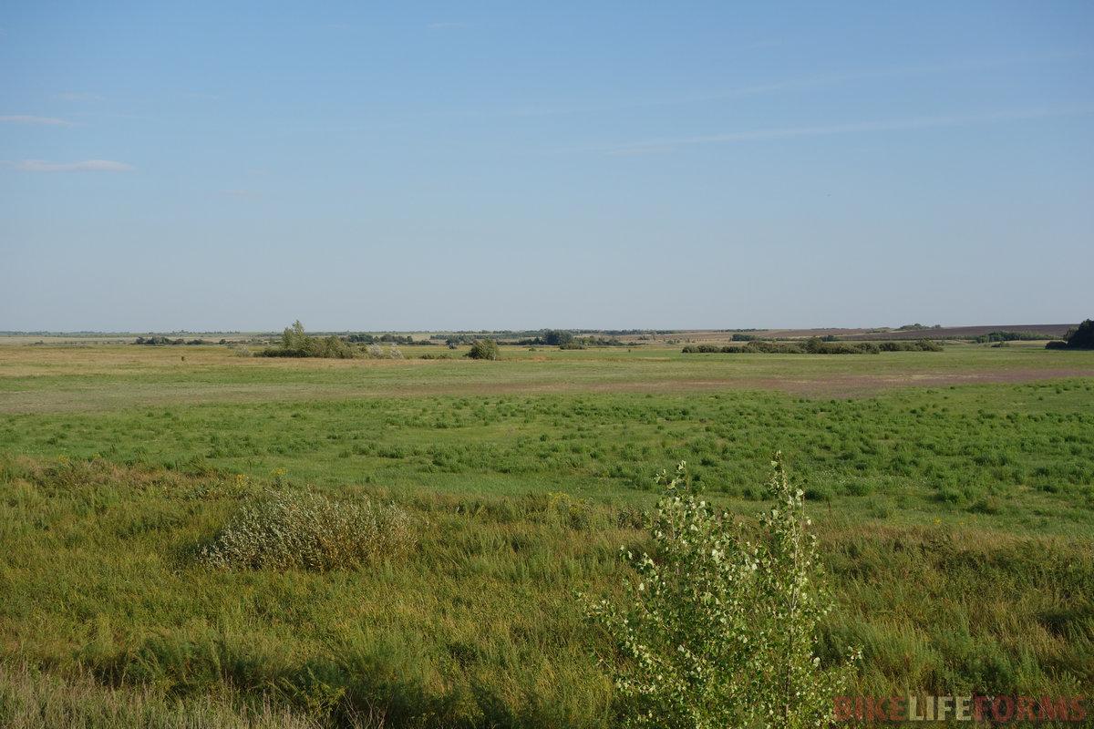 а где влажнее - там и травы зеленее!