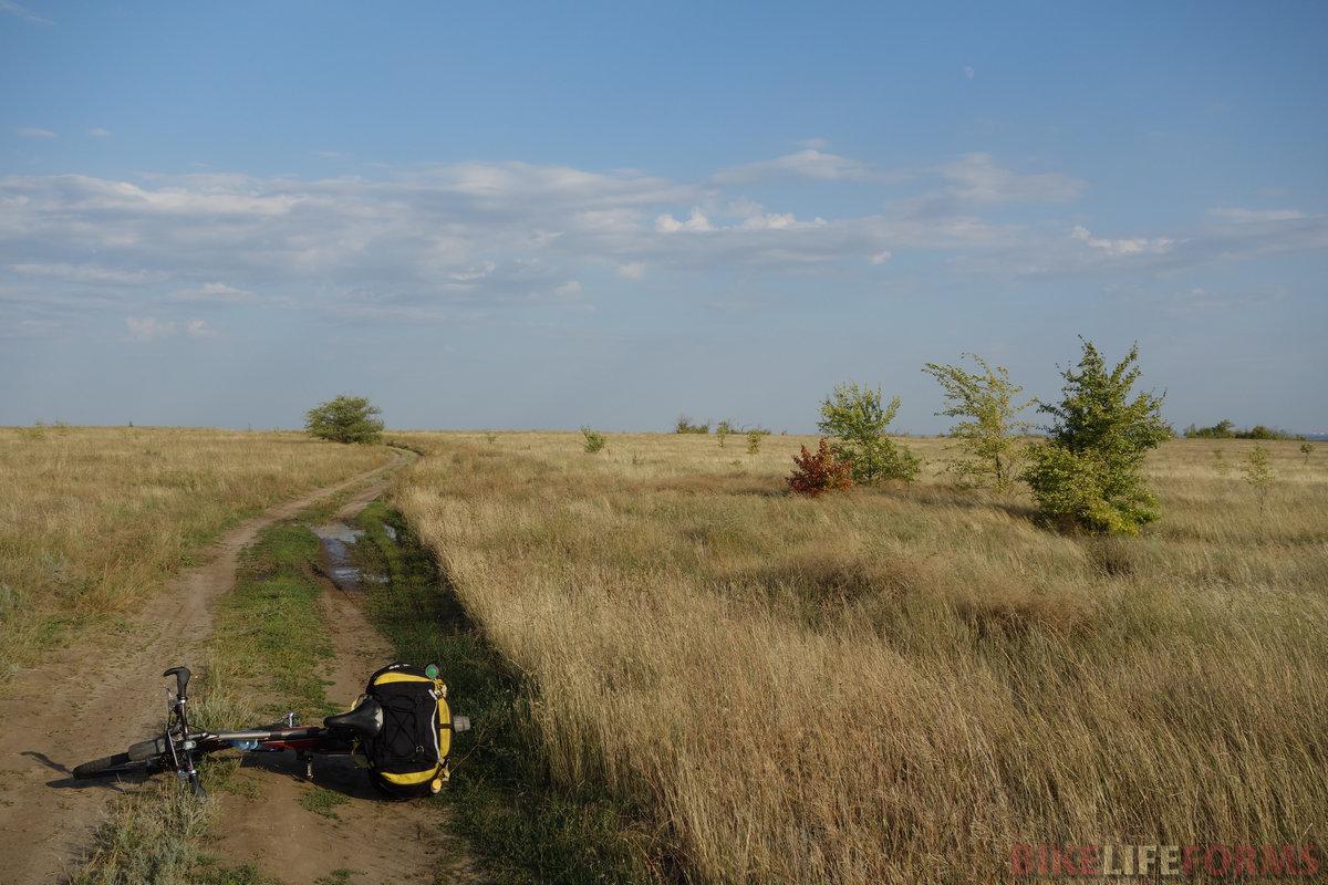 с каждым днем местность будет всё влажнее, а пока радует степное раздолье!