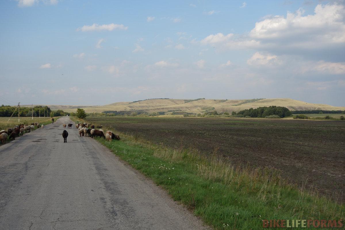 Сокурский тракт - очень живописная дорога! но это еще не всё