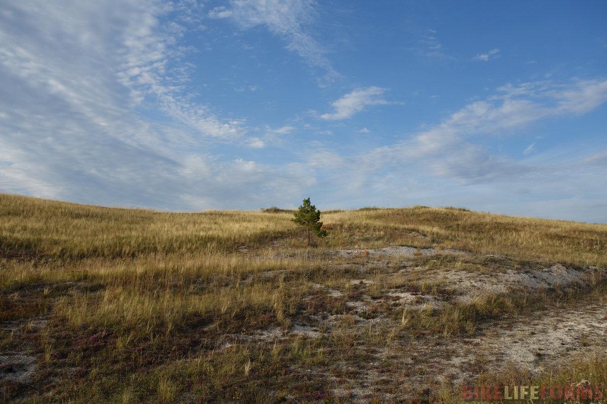 одно из лучших фото похода! Благодаря облакам и переливам травы под вечерним солнцем