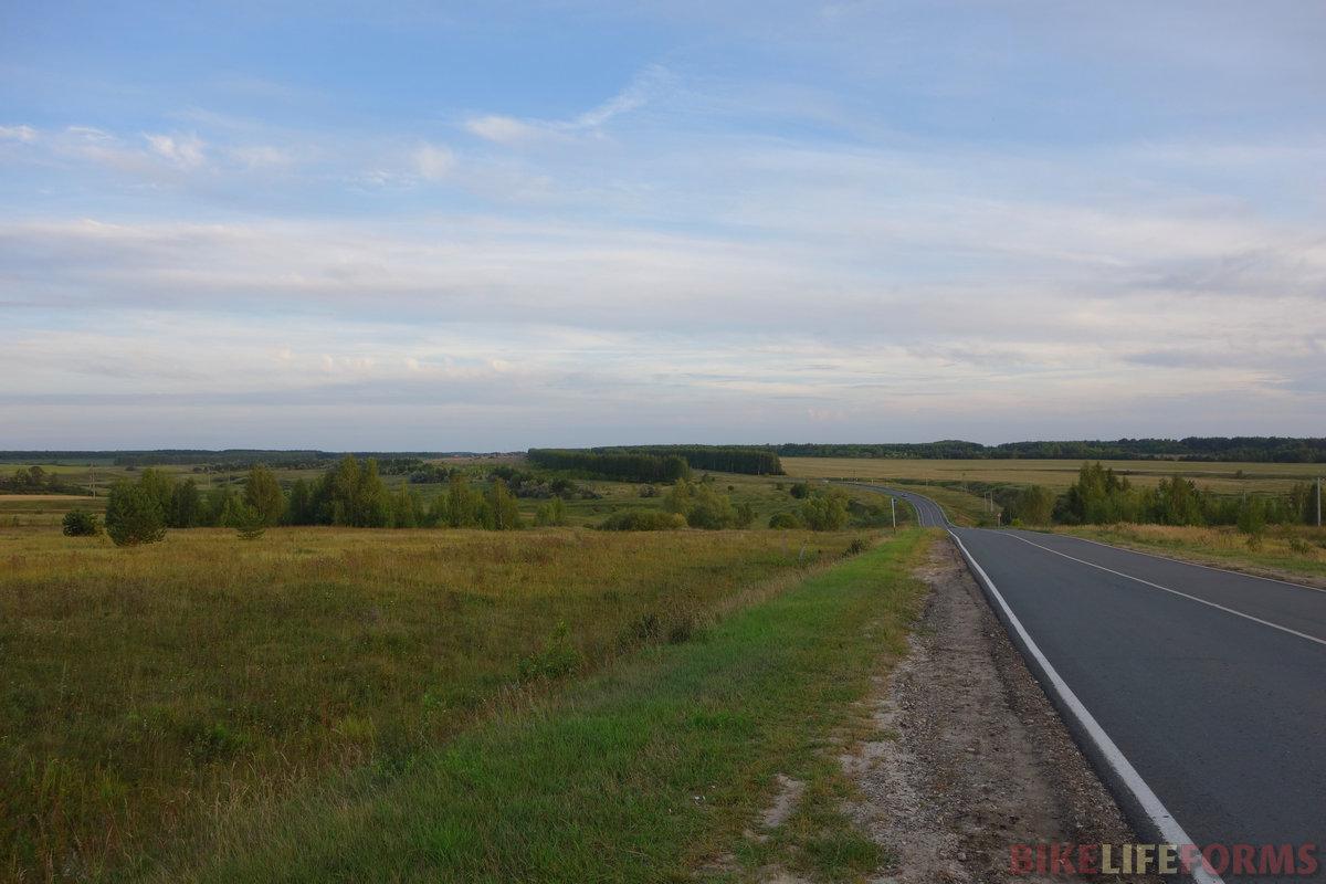 к северу от Ульяновска природа сильно меняется. Всё, это уже лесная зона... но продолжают встречаться лохи