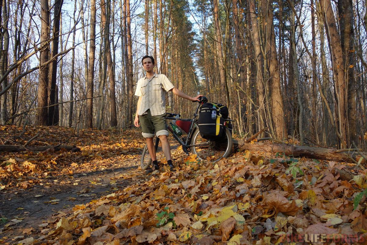 ковер опавших листьев еще не высох до конца...
