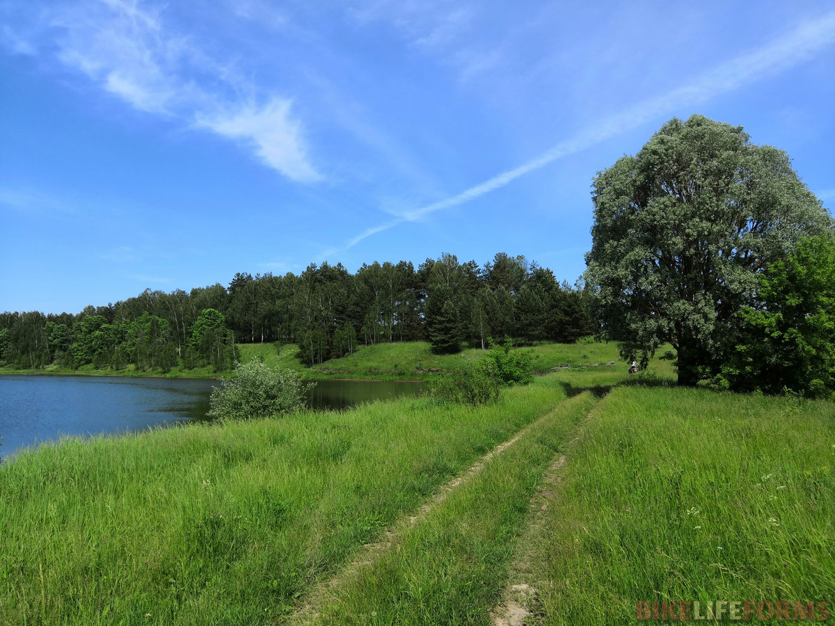 тупиковая дорога на пруд