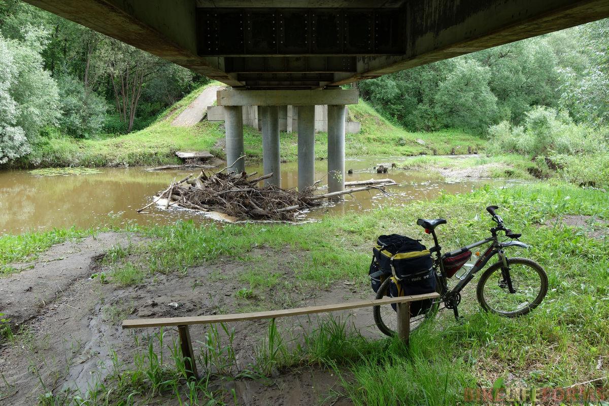 под мостом через Шаню