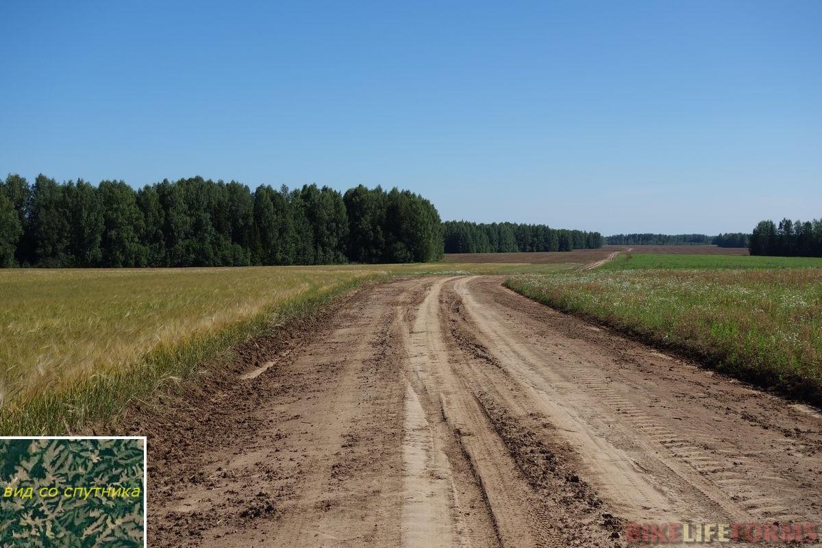 полевая дорога 43rus