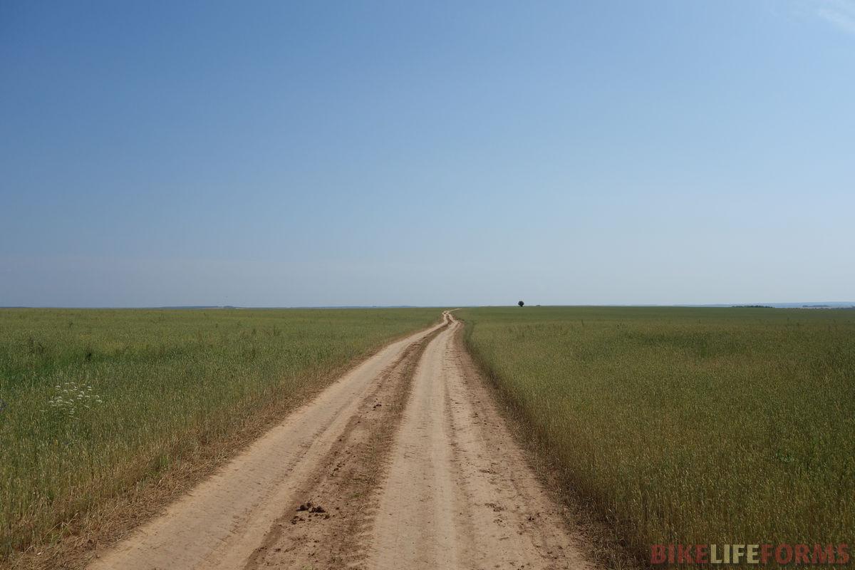 полевая дорога у реки Воя