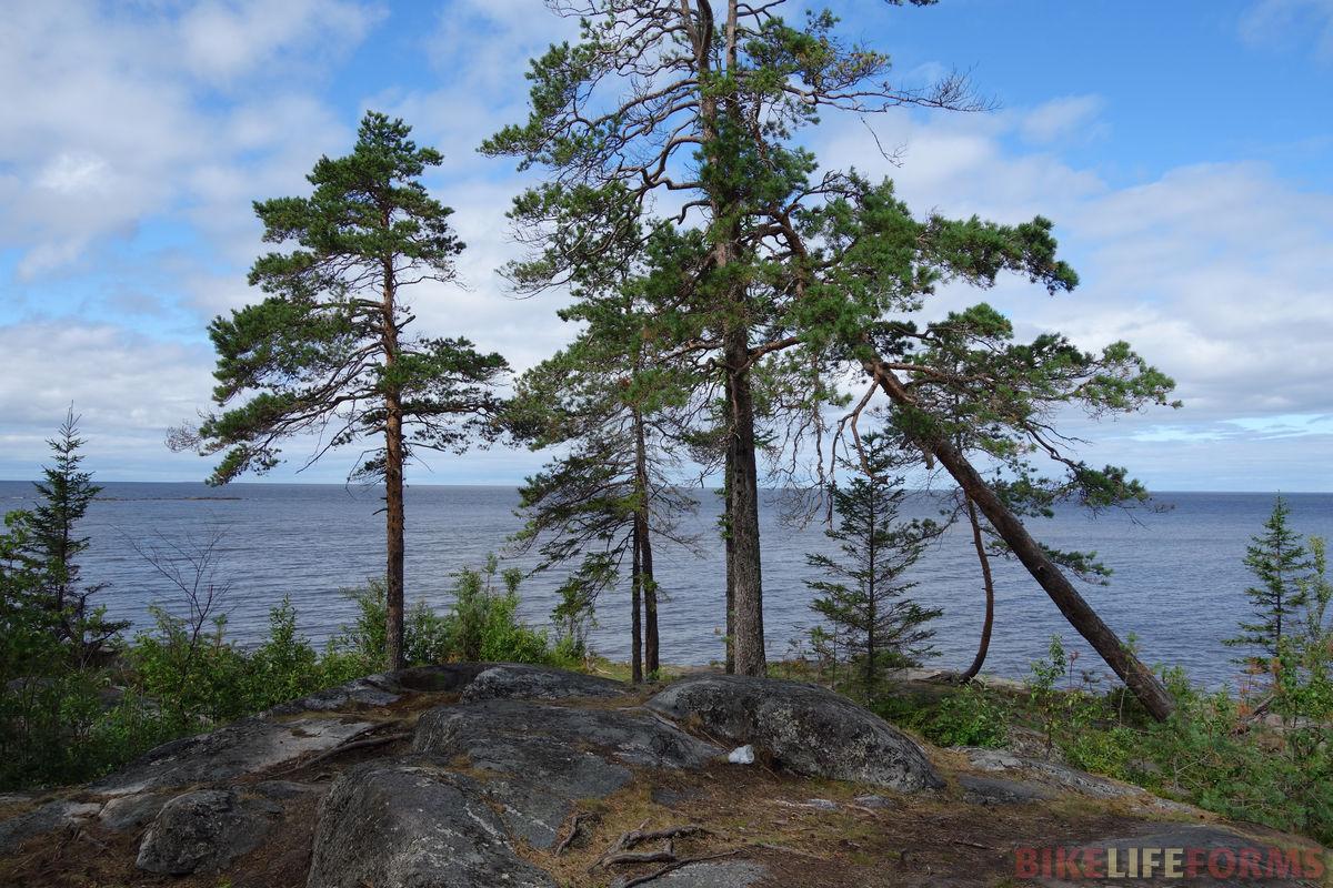 юг Белого моря