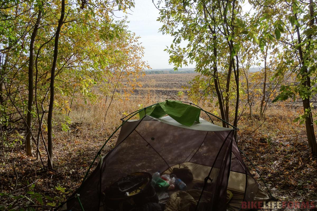 палатка под ясенями