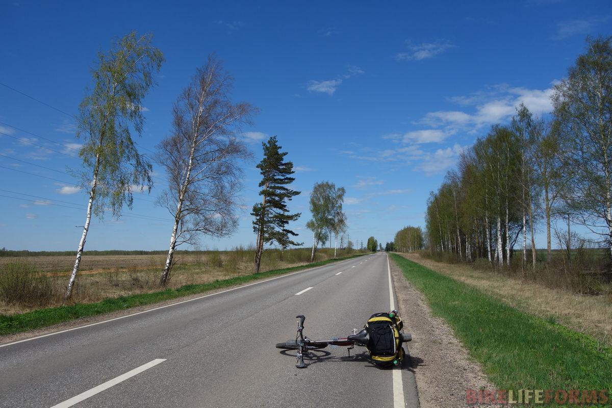весенняя дорога на Ошейкино