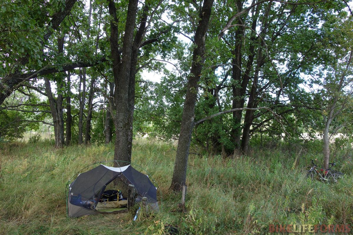 сетка палатки MSR Hubba Hubba под дубами